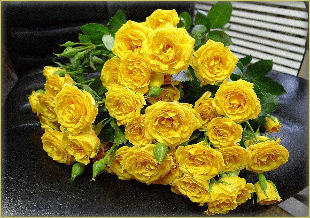 открытки с желтыми цветами себя лично, что