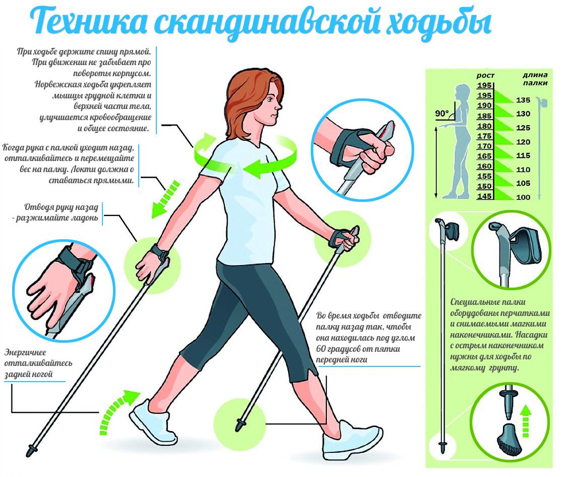 Польза ходьбы похудение