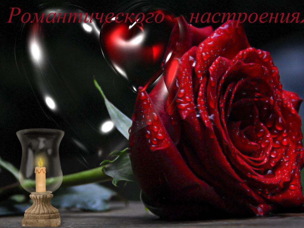 Красивую открытку для любимой девушки добрый вечер, картинки пионеров