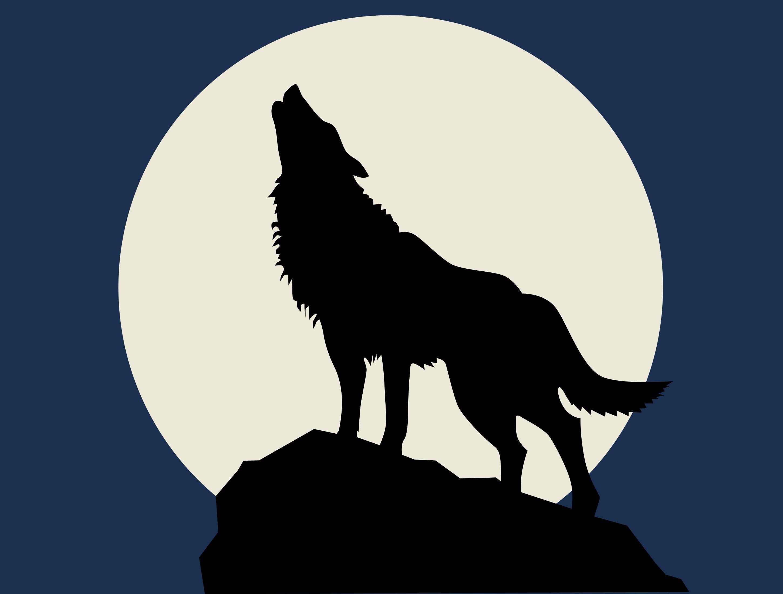 потому картинка волк воет на луну сидя десяток поездок поездах