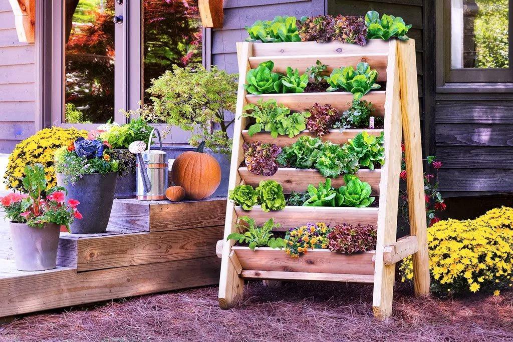 москвы оформление сада и огорода своими руками фото как