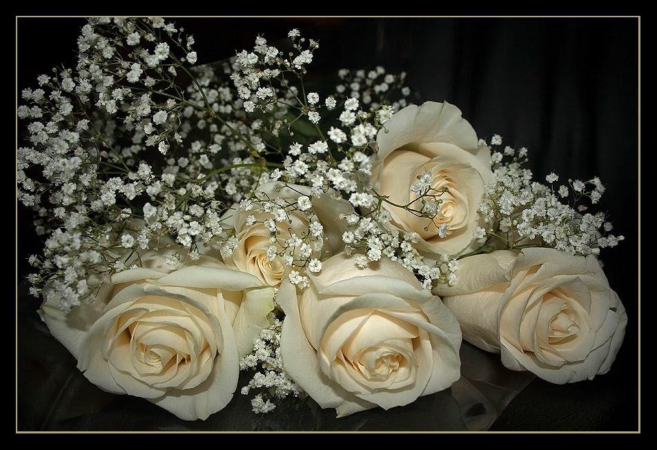 Анимационные открытки белые розы