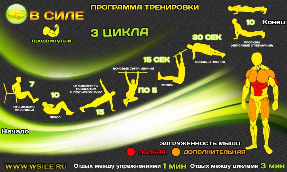 ЛАСТОЧКИ 50