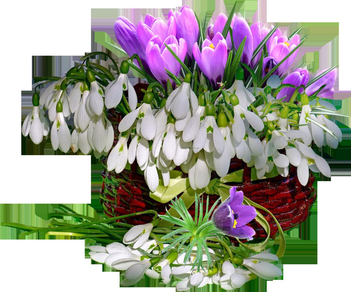 Открытки весенними цветами