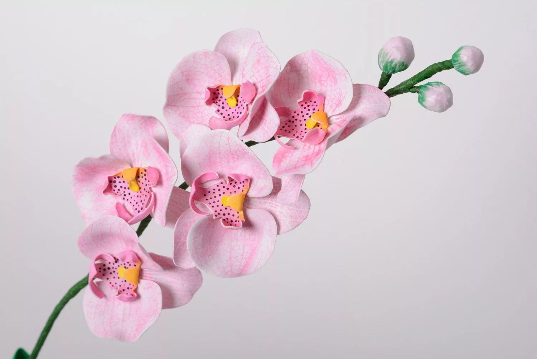 условия орхидеи картинки на бумаге кровати