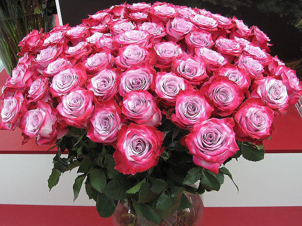 Большой и красивые букеты роз в мира фото, свадебных букетов для