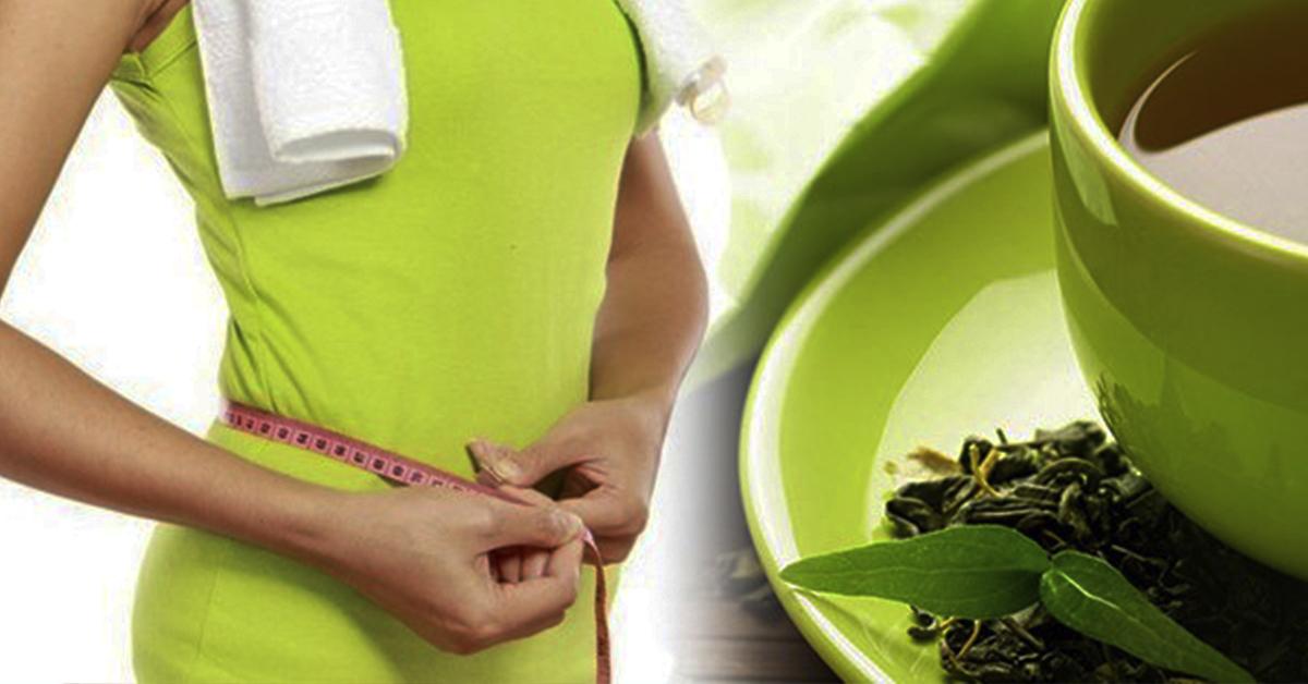 Зеленый чай диета похудеть