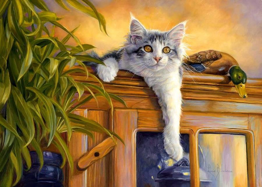 профессиональная пейзажи с котами картинки аренду однокомнатная квартира