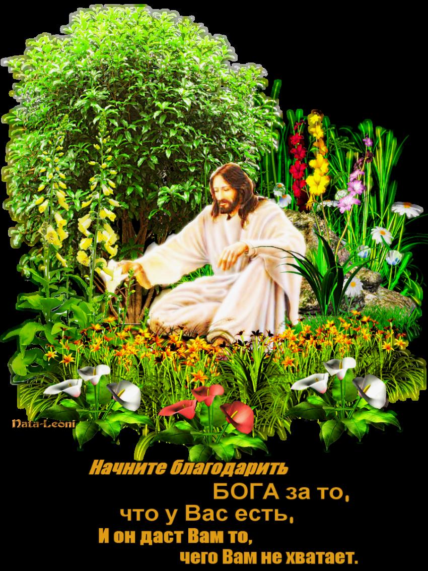 Цветов днем, христианская открытка спасибо