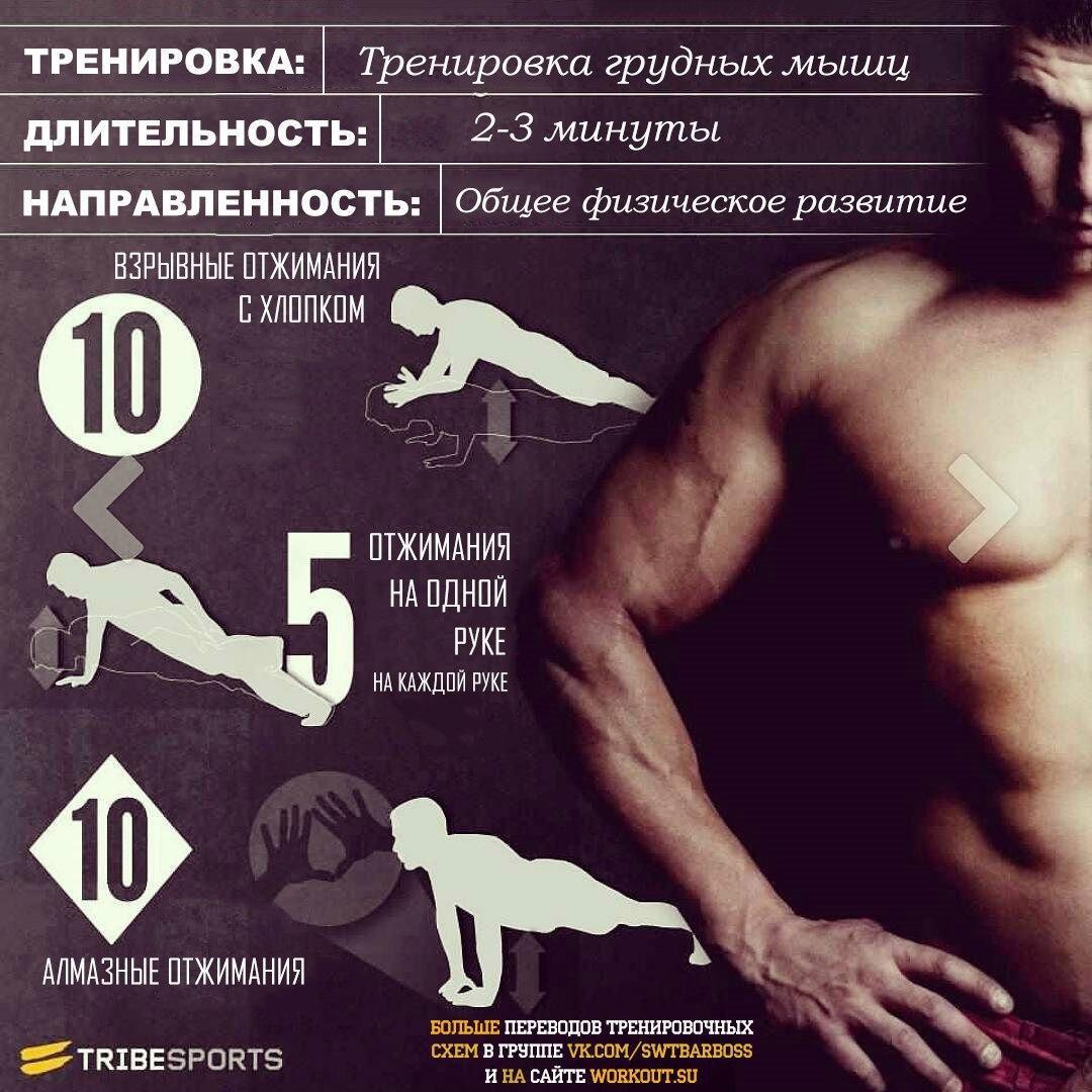 Примеры тренировок в картинках