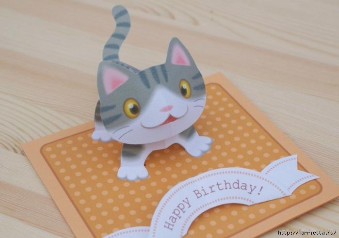 Смешные, как сделать открытку на день рождения кошке