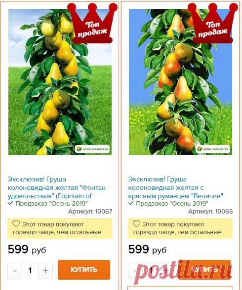 Промокод Агромаркет 24 Интернет Магазин