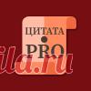 Tsitata Pro