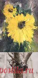 Календарь природы на июль - Bсе для людей!