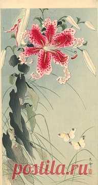 Лилии и бабочки - Ohara Косон