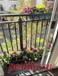 Если у вас нету дачи, то украшаем балкон