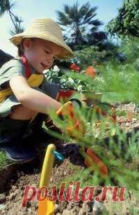 Садоводство – самый простой способ сохранить здоровье