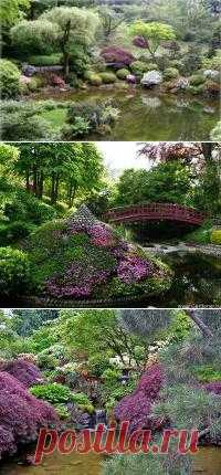 Садовый участок - советы по дизайну и планировке.