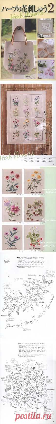 Herb Flowers 2.