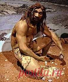 | Потомок неандертальца и кроманьонца