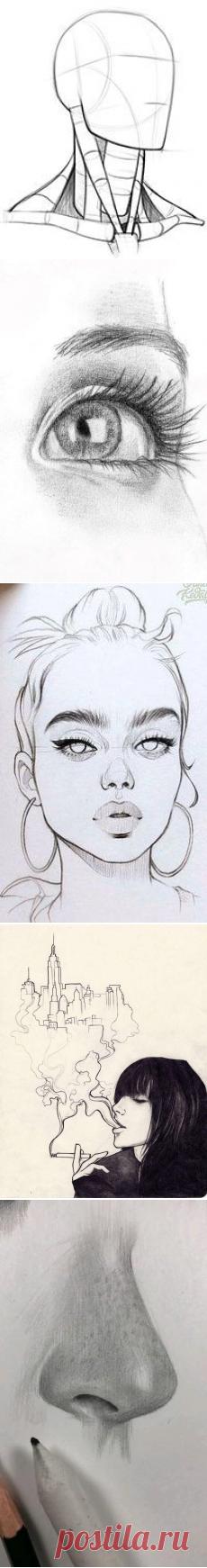 (785) Pinterest