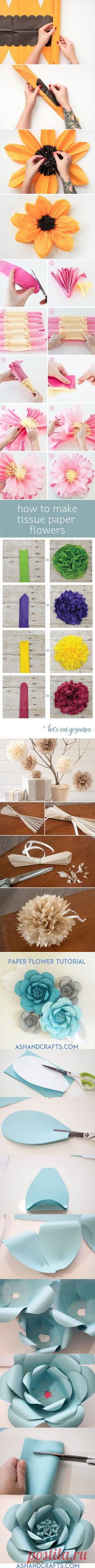 Tissue Paper Pom-Pom Kit -Chrysanth Flowers