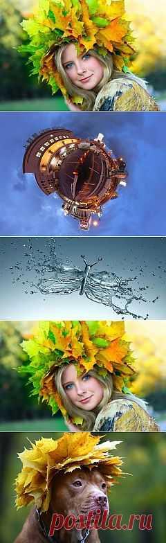 (+1) тема - Музыка для души. Красивая осень. | ЛЮБИМЫЕ ФОТО