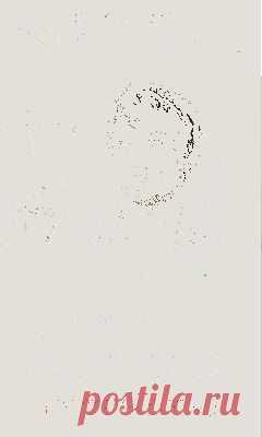 Тендер Крафт Пакет 4000 - 5000 шт.