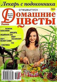 Домашние цветы. Спецвыпуск №1 2014. Лекарь с подоконника.