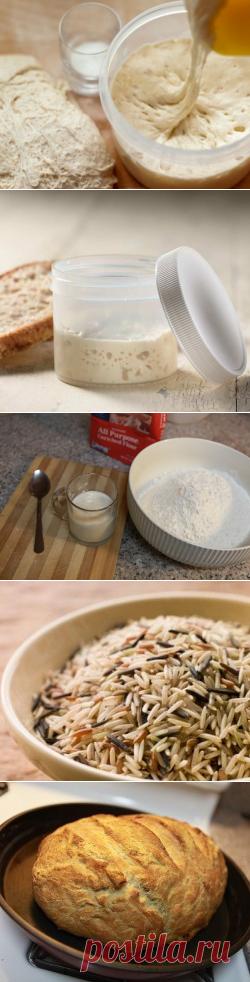 Закваска для хлеба: готовим закваску для бездрожжевого хлеба