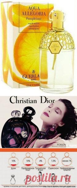Какие бывают духи по запаху. Какие бывают запахи? Классификация и ноты ароматов