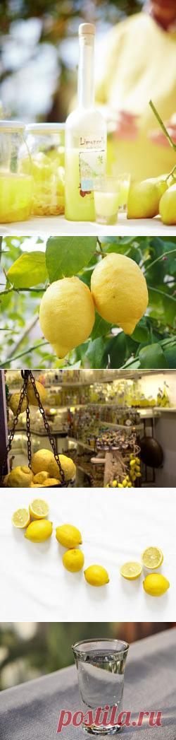 Ликер лимончелло | Рецепты Джейми Оливера