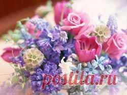 Дыхание весны. Новый выпуск журнала Мелодия души   Блог Ирины Зайцевой