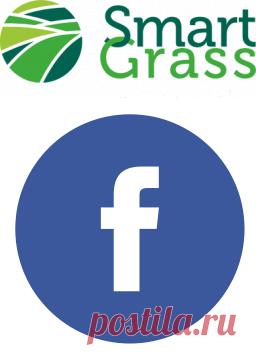 Цены на рулонный газон под ключ в Москве и Подмосковье, цена за рулон и за м2   smartgrass
