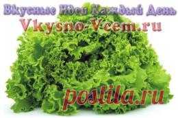 Салат Романо. Каждое лето диетологи рекомендуют супер салат, который отличается особой пользой. Верхнюю строчку рейтинга занимает салат Романо. Кулинарные новости, касающиеся низкокалорийных продуктов, интересуют не только любителей диет. Чем же полезен знаменитый римский салат?