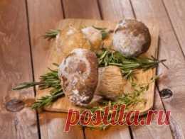 Полезные советы: как заморозить и засушить грибы - Продукты и напитки - Кухня - Аргументы и Факты