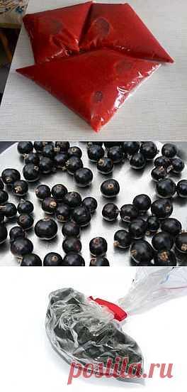 Способы заморозки ягод клубники ,смородины  в пакетах.
