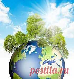 Всемирный банк и природоохранные проекты - ГЕНИЙ БИОРАЗНООБРАЗИЯ