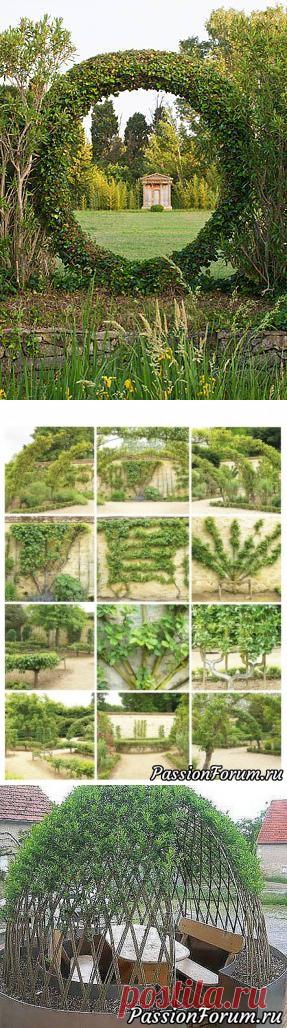 Идеи для дома, сада, огорода. - запись пользователя Olga202202 в сообществе Болталка в категории Интересные идеи для вдохновения