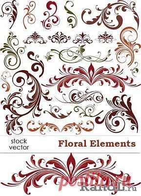 Vector - Floral Elements | Растительные элементы, вектор » RandL.ru - Все о графике, photoshop и дизайне. Скачать бесплатно photoshop, фото, картинки, обои, рисунки, иконки, клипарты, шаблоны.