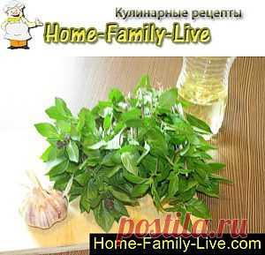 Хранение базилика в растительном масле с чесноком - Кулинарные рецепты | Кулинарные рецепты