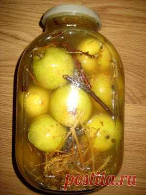 Яблочки мочёные    Польза мочёных яблокСодержание белков и жиров в мочёных яблоках достаточно низкое. А вот углеводы, в частности, сложные, то есть трудно перевариваемые растительные волокна, здесь присутствуют в бол…