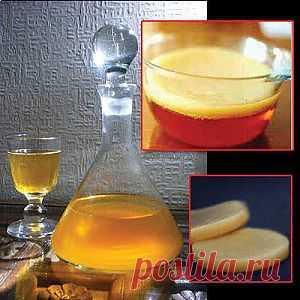 Полезные свойства чайного гриба. | Гармония