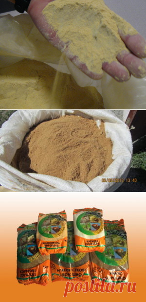 Кормовые добавки из побочныхпродуктов горчично-маслобойного производства - БиоКорова