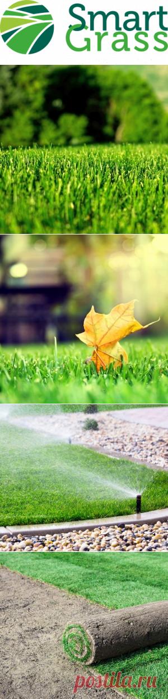 """Купить рулонный газон от производителя в Москве - официальный сайт компании """"Smartgrass"""""""