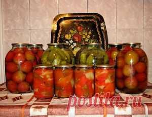 Простые и вкусные рецепты консервирования овощей - Овощи на зиму . 1001 ЕДА вкусные рецепты с фото!