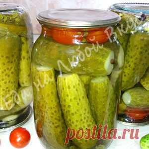 ¡Los mejores Pepinos para el invierno, para el almacenaje en el Apartamento! ¡La receta fácil con una zalivkoy!