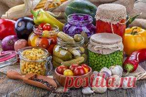 🌞 Лучшие 40 рецептов лета: помидоры, выпечка, горячее и ... Конкурс! - Почта Mail.Ru