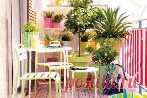 Весна - пора переносить комнатные растения на балкон. Несколько советов как это лучше всего сделать.