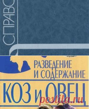 Овцеводство и козоводство. Справочник - Архипов